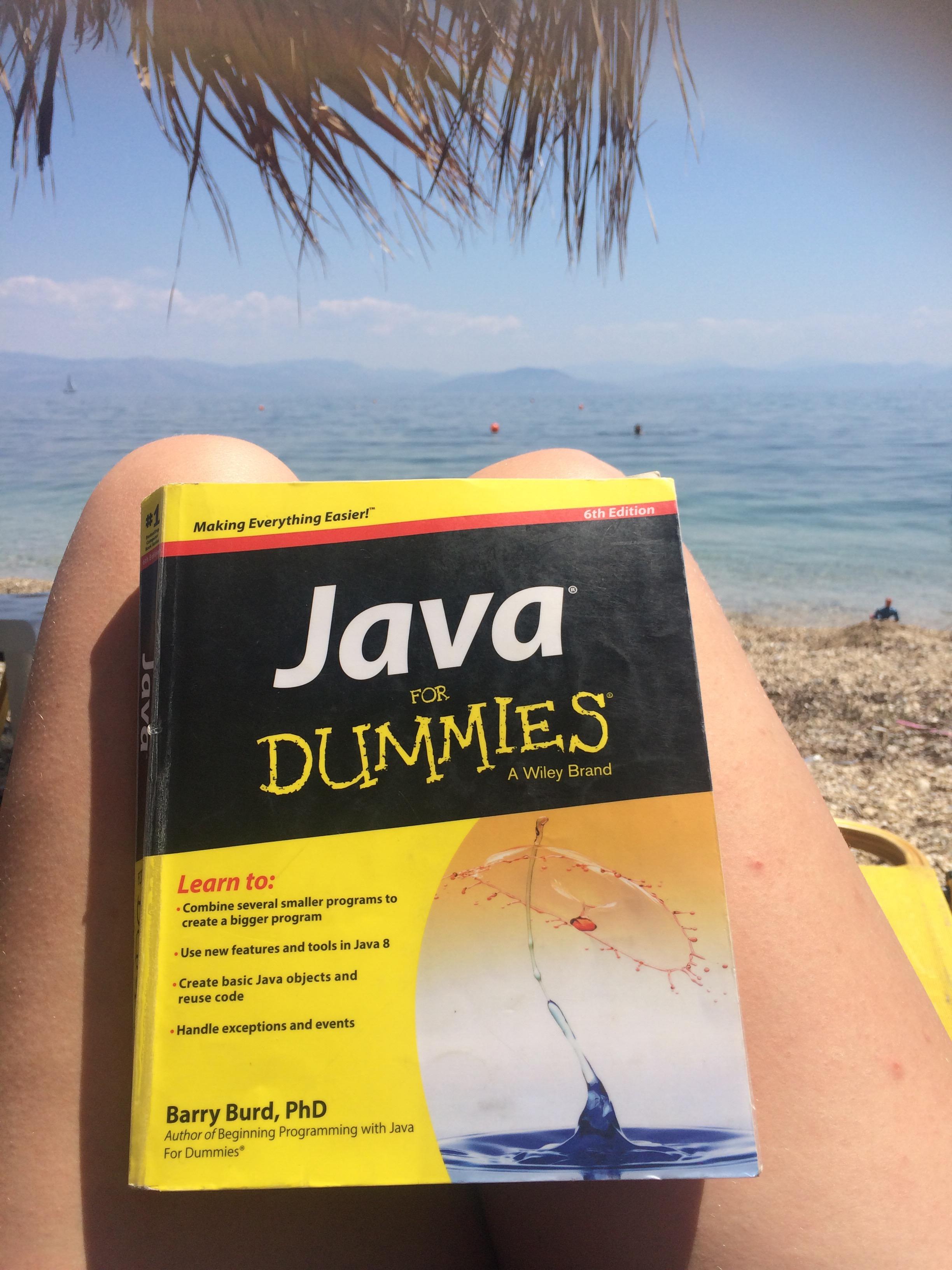 Java for Dummies -kirja rantatuolissa